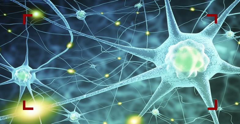 التهاب الأعصاب وكيفية علاجه بأفضل الطرق الصحيحة